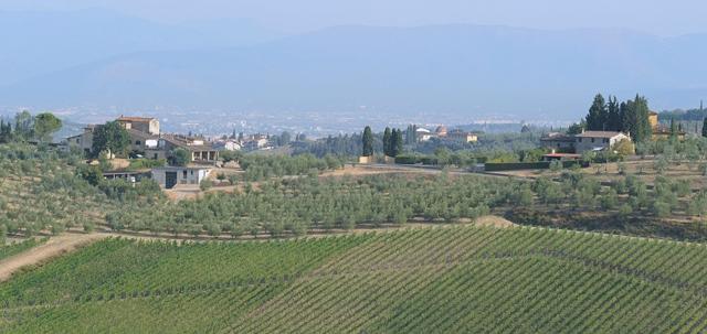 Blick auf den Betrieb La Querce mit Sangiovese Rebanlagen und Olivenhain. (Foto: La Querce)
