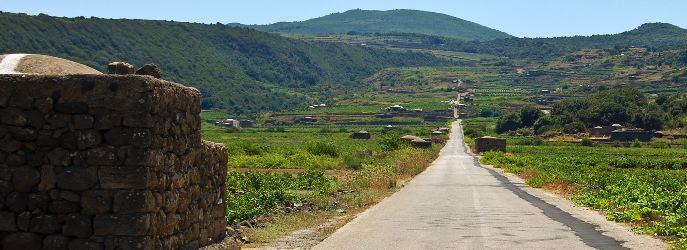 Auf dem Foto sieht man eine typische Landschaft auf der Insel, der Heimat der Königin von Pantelleria (Foto: Vinisola)