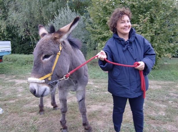 Auch Gloria möchte ein Erinnerungsfoto nach der Weinlese mit Eseln aber es scheint, dass es Bastiglia nun reicht mit dem Fotoshooting (Foto: Katrin Walter - simply walter). Man sieht Gloria Malavasi mit dem Esel, der sich allerdings bereits abwendet.