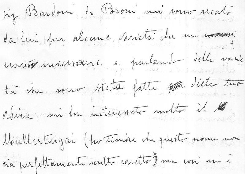 Auszug aus dem Originalbrief von 1950 in der Handschrift des Großvaters Roberto Sesia an seinen Cousin Francesco Tullio.