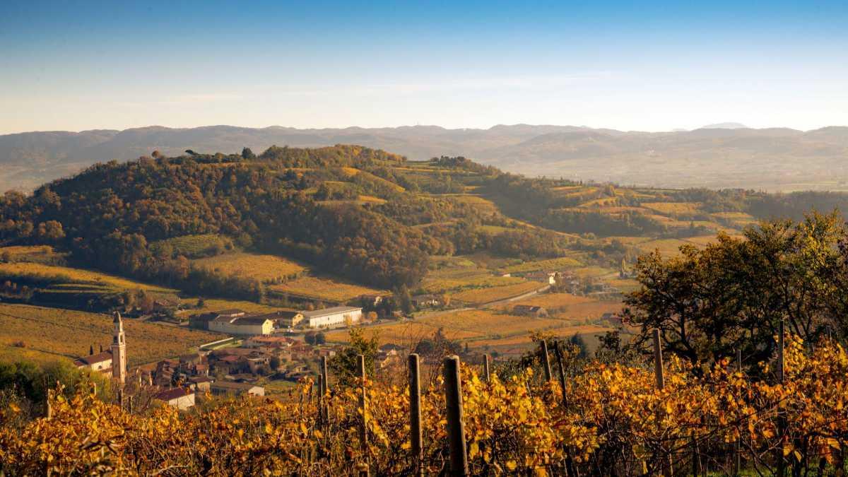 Das Weingut mitten in den Hügeln im DOC-Gebiet Gambellara - Foto zur Illustration der Referenz für Katrin Walter - simply walter