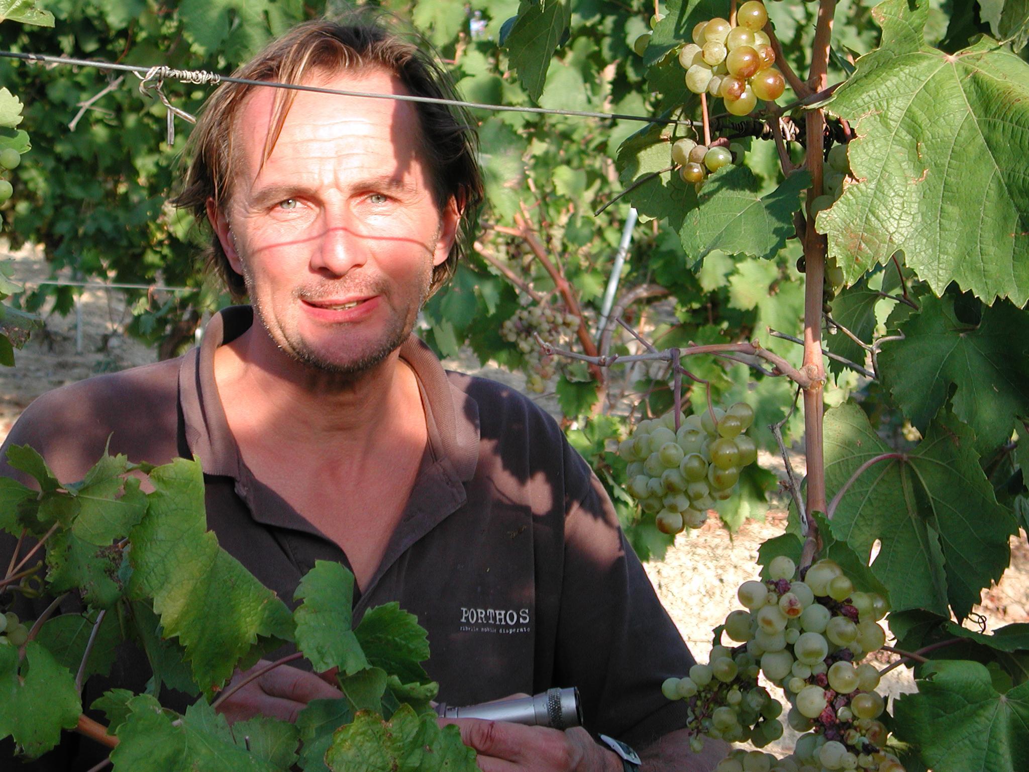Walter Massa schaut in seinem Timorasso-Weinberg nach dem Rechten und prüft den Zuckergehalt der Beeren. (Foto: Roberto Vaniglia)