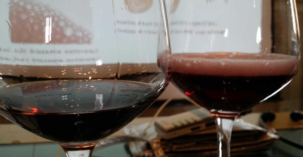 Freisa-Wein im Glas einmal still und einmal frizzante. Foto: Katrin Walter - simply walter