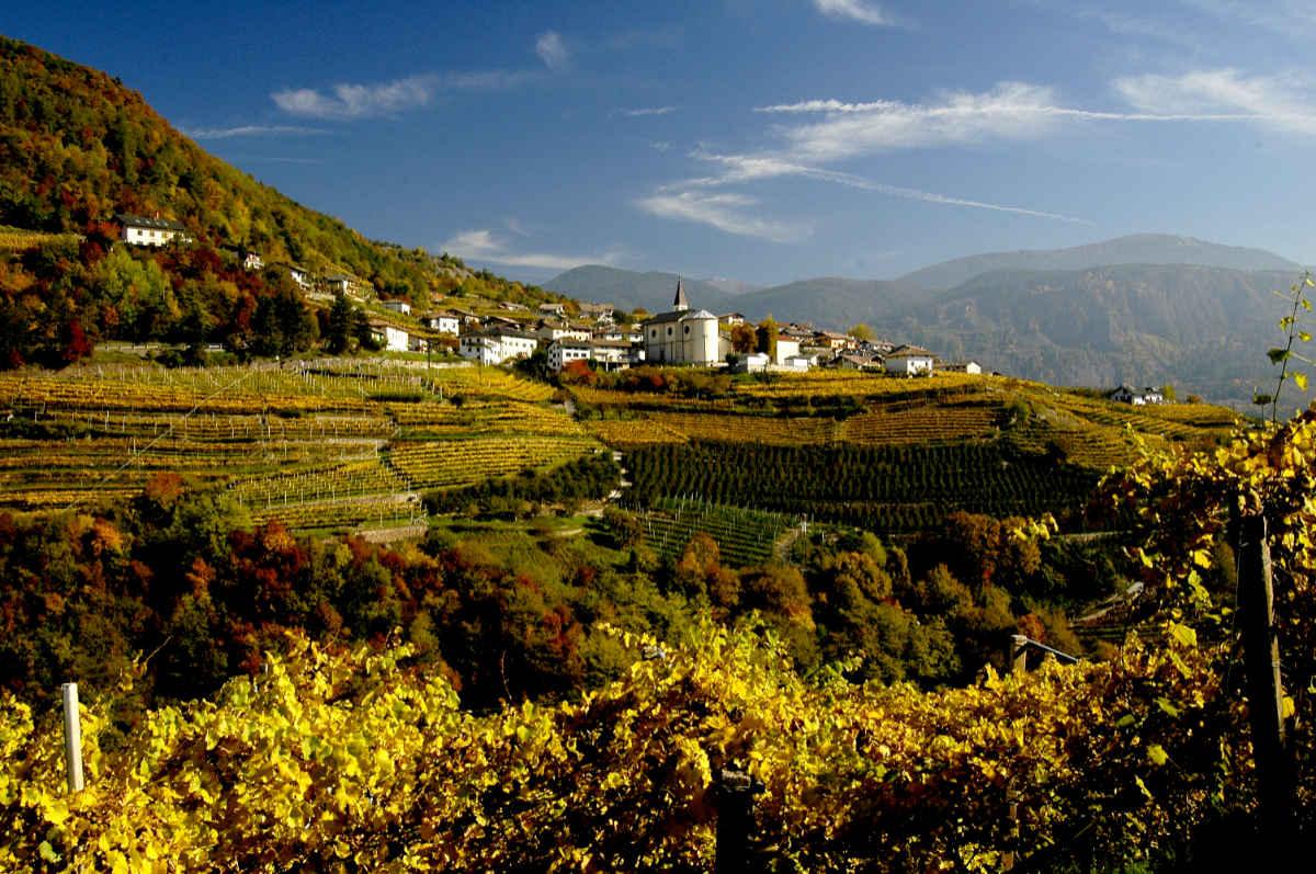 Das Cembratal im Herbst in ein goldenes Kleid gehüllt. Foto: Luciano Lona für simply walter