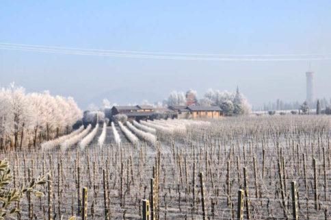 San Martino della Battaglia im Winter. simplywalter.biz