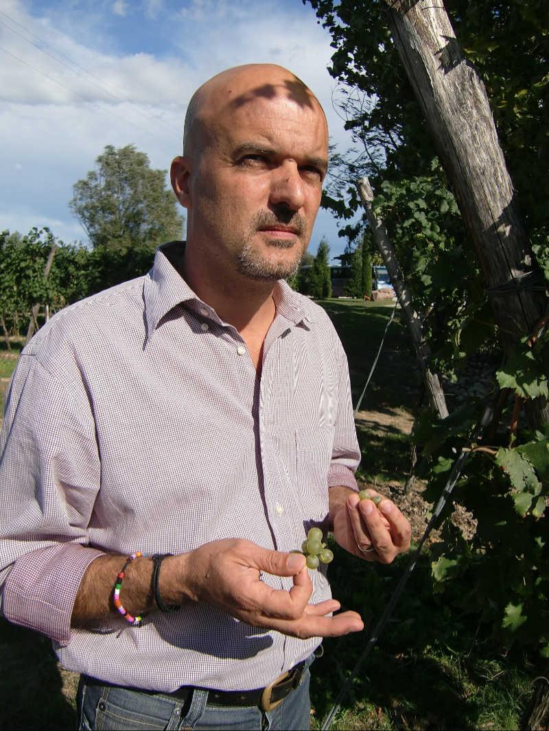 Luca Formentini, Weinproduyent im Gebiet San Martino della Battaglia. Foto: Katrin Walter simplywalter.biz